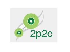 2P2C PROJECT CONTROLS SERVICES FZE